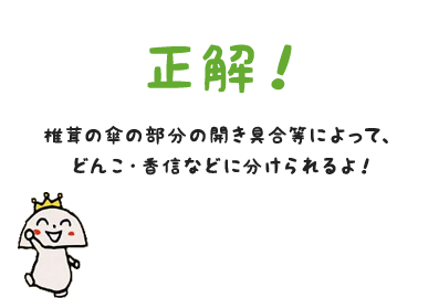 こたえは…× 椎茸の傘の部分の開き具合等によって、どんこ・香信などに分けられるよ!